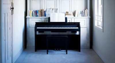 Bán PIANO PX-860