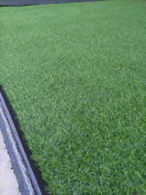 Thảm cỏ nhựa nhân tạo sân vườn Vũng Tàu, mua bán thảm bằng nỉ lót sàn hội chợ giá rẻ HCM