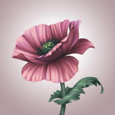 Tranh dán tường 3d hoa vẽ mang đậm chất nghệ thuật