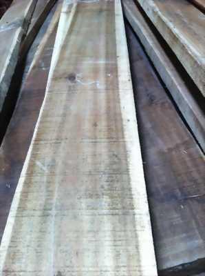 Chuyên cung cấp gỗ nhập khẩu: Oak, Ash, Beech, Walnut