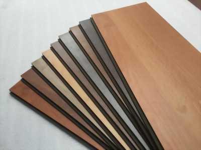 Tìm đại lý hợp tác phân phối sàn gỗ, ván ép, coppha