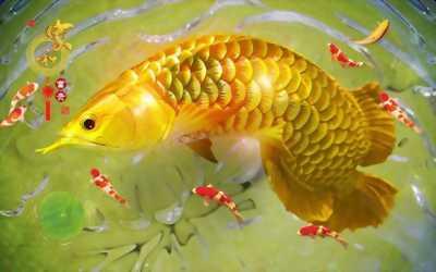 Tranh gạch men 3D cá chép