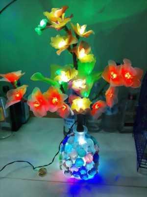 Hoa vải,  Hoa đèn trang trí và tặng người thân