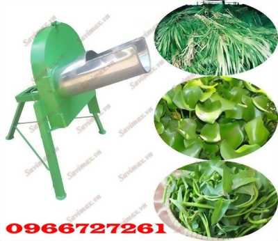Máy thái chuối, rau cỏ đa năng 1.5kw