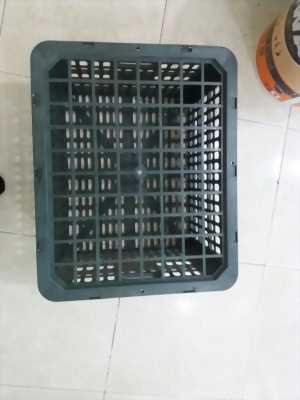 Bán buôn rổ quýt 20kg Phú Hòa An số lượng lớn
