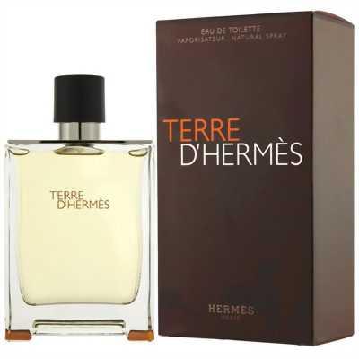 Nước hoa nam Terre D'hermes