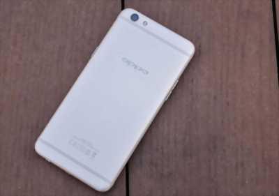 Oppo R9S Plus đang dùng