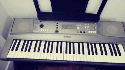 Organ Casio đã qua sử dụng