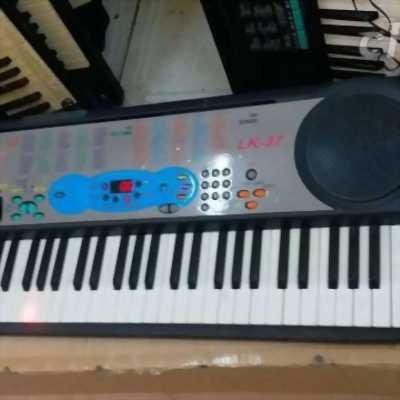 Đàn organ Casio chuyên nghiệp