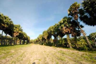 Bán gấp 3 sào đất vườn + nhà thái cấp 4 cạnh KCN