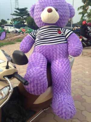 Gấu Teddy 1m8 giá rẻ quận 12