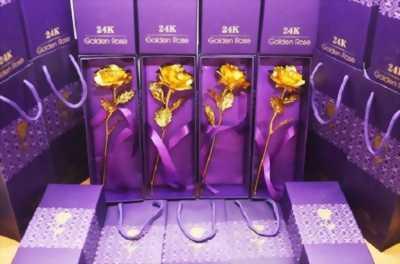 Bông hồng mạ vàng 24k golden rose giá sỉ Hồ Chí Minh