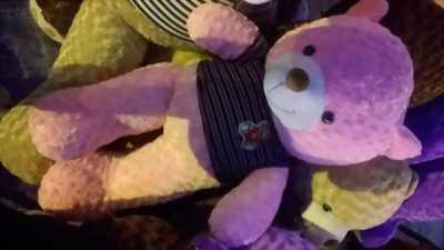 Gấu bông teddy tặng trong các dịp lễ, sinh nhật..vv