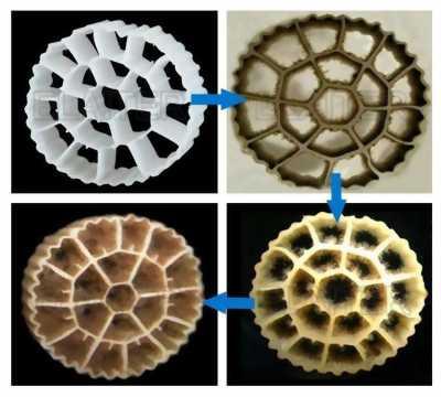 Cung cấp và phân phối hạt lọc kaldnes,vật liệu lọc lơ lửng Mbbr