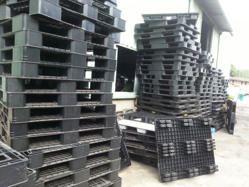 Mua bán pallet nhựa Hà Nam, Pallet nhựa cũ Hà Nam