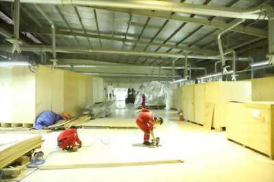Dịch vụ đóng thùng gỗ xuất khẩu hàng hóa uy tín