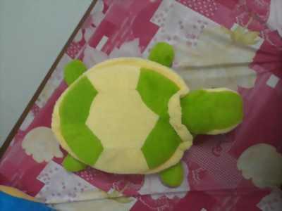 Bé Rùa Gấu Bông CUTE