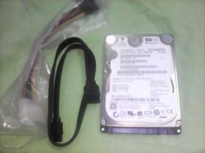 Ổ cứng 160Gb western digital 380k