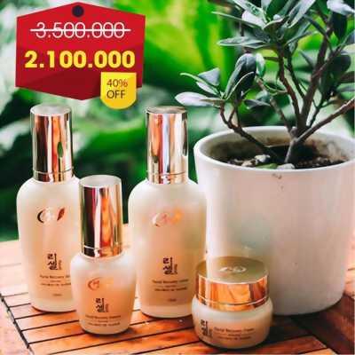 Sale 40% cho mỹ phẩm Saeng Hàn Quốc chính hãng