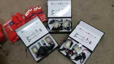 Đèn Xenon H7 canbus cho xe hơi
