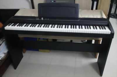 Bán Piano Điện Korg SP170S