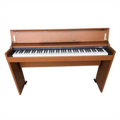 Đàn Piano Roland DP-700