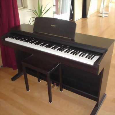 Đàn Piano Yamaha YDP-101