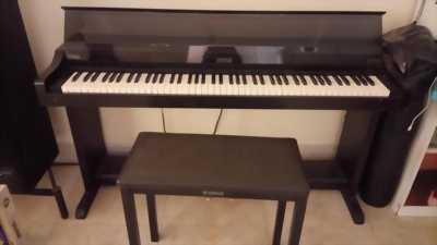 Piano Điện Korg chính hãng nhật bản