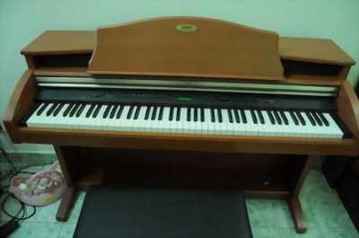 Bán đàn piano điện Kawai PW1000 chính hãng giá rẻ