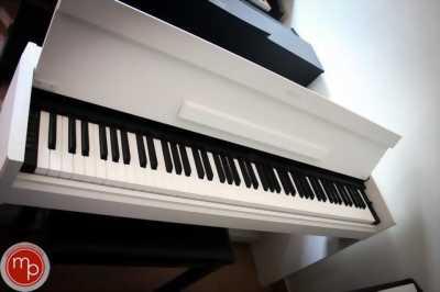 Đàn piano điện giá rẻ, chính hãng  chỉ có tại Nhạc cụ Minh Phụng