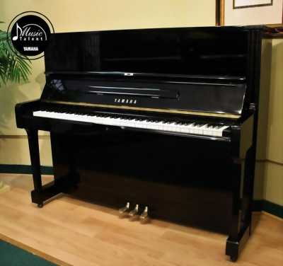 Cần bán PIANO Cơ cũ giá rẻ tại hà nội