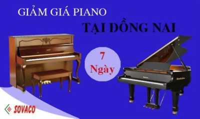 Bán đàn piano giá hấp dẫn tại Đồng Nai