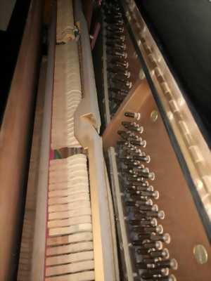Bán đàn piano cơ Nhật Bạn đẹp