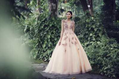 Áo Cưới công chúa màu hồng, thân ren 3D nổi bật
