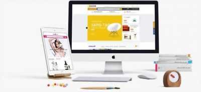 Chuyên thiết kế website chuẩn seo