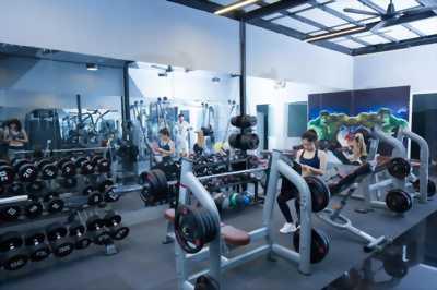 Phòng gym nhập khẩu