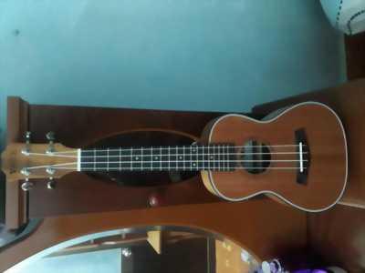 Cần bán đàn ukulele