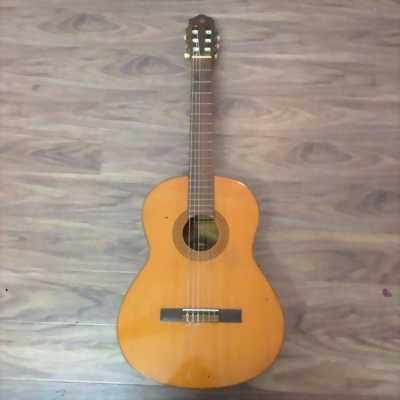 Đàn guitar classic g60a