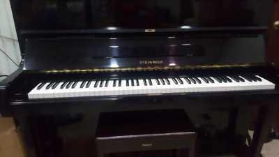 Đàn piano stein rich