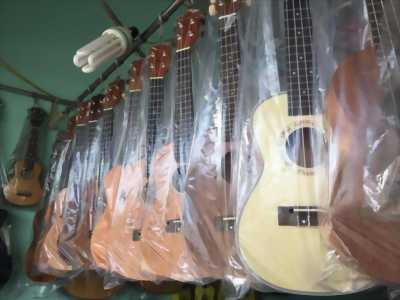 Đàn Ukulele Concert Giá Rẻ - nhạc cụ Minh Phát