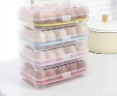Hộp đựng trứng dã ngoại