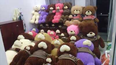 Chuyên Sỉ Lẻ Gấu Teddy