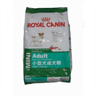 Thức ăn chó Royal Canin Mini ADULT - 800g