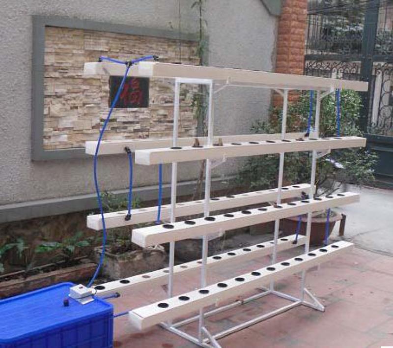 Giải pháp rau sạch thủy canh tại nhà