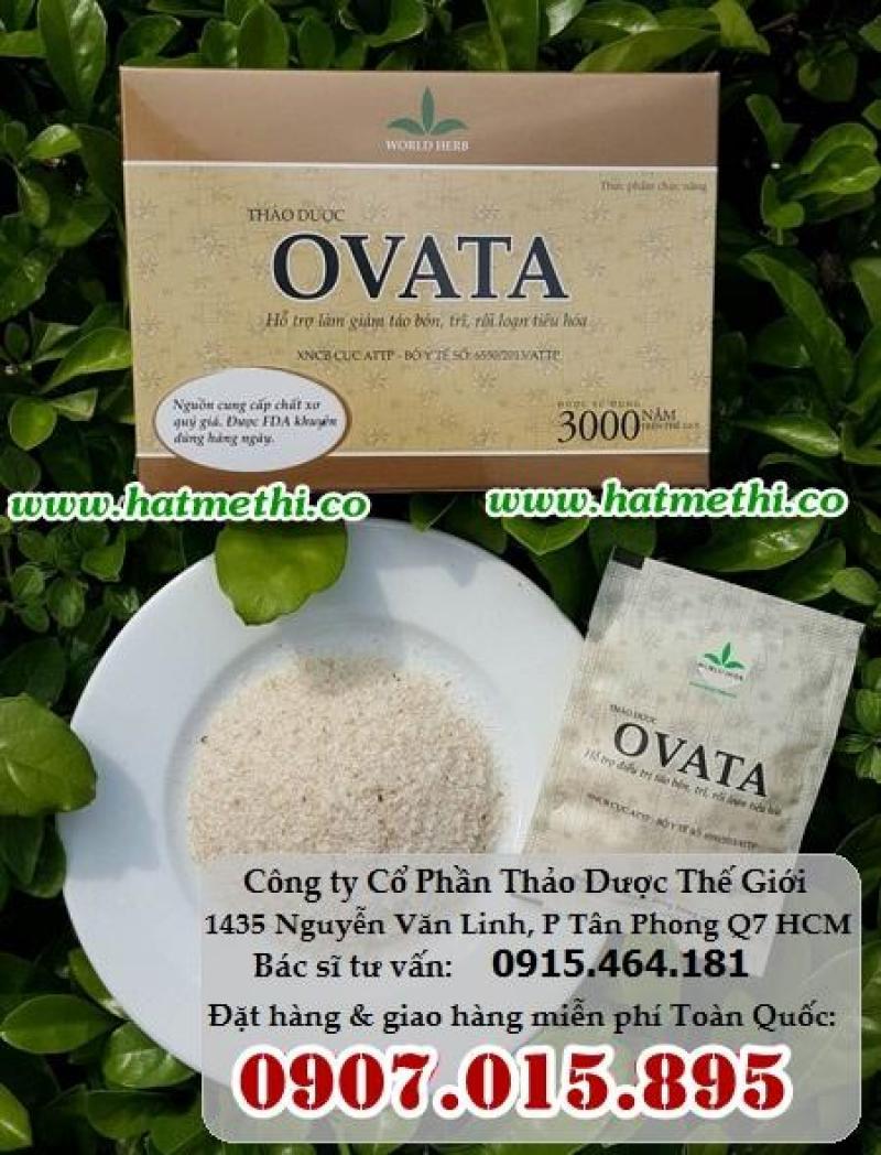 Vỏ hạt mã đề OVATA trị dứt táo bón, trĩ, hội chứng ruột kích thích