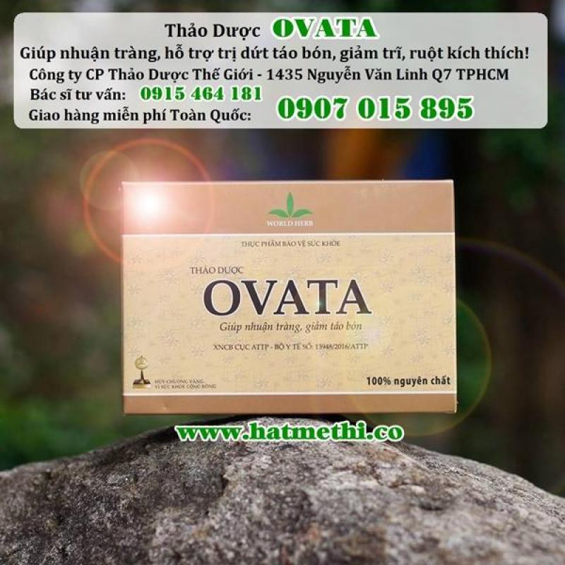 Thảo dược Ovata nhuận tràng, trị táo bón, bệnh trĩ hiệu quả