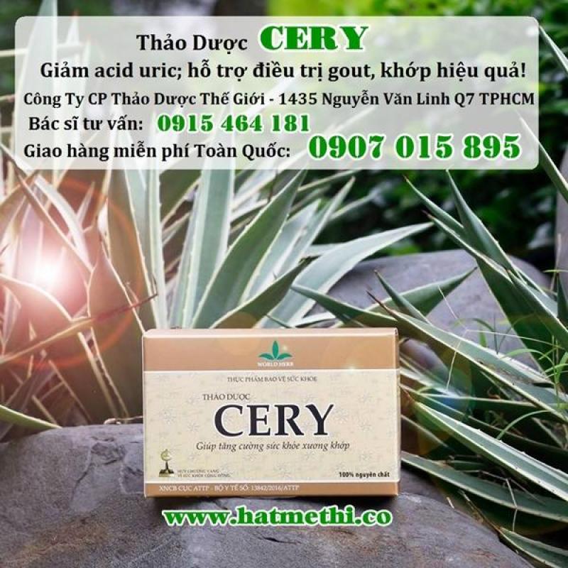 Thảo dược Cery trị hiệu quả bệnh gout và viêm thấp khớp