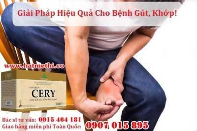 Thảo dược CERY chuyên trị gút, đau nhức xương khớp