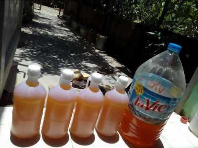 Bán mật ong nguyên chất Đắk Lắk
