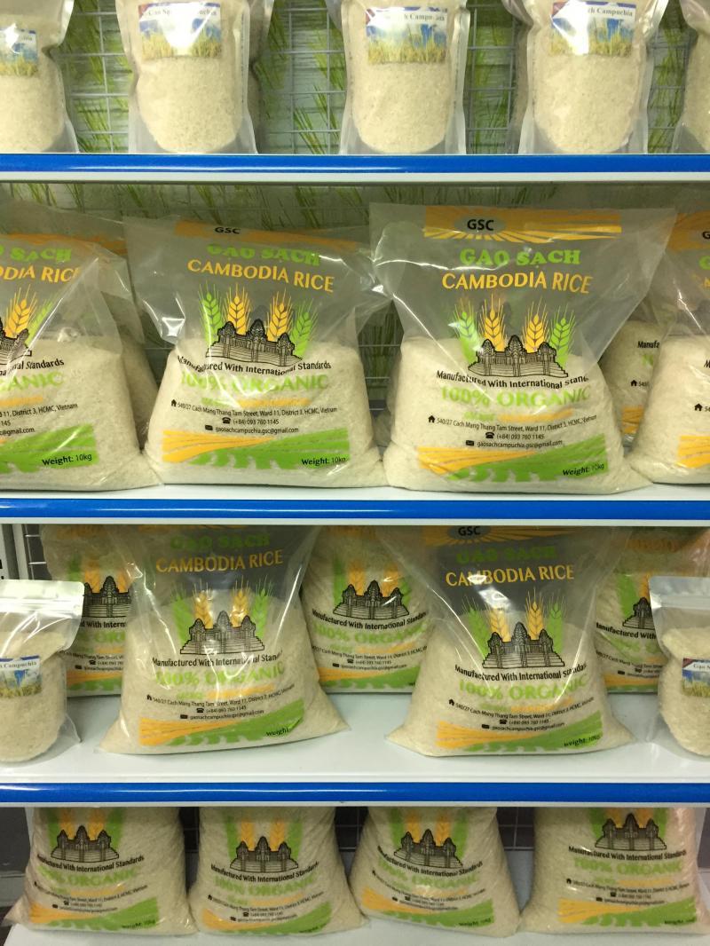 Gạo sạch Campuchia, lúa mùa 6 tháng, trồng 1vụ/năm